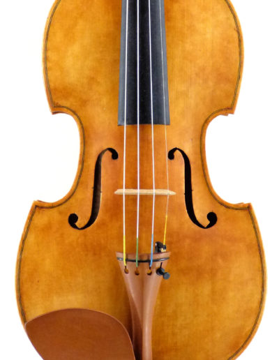 violon-gambe
