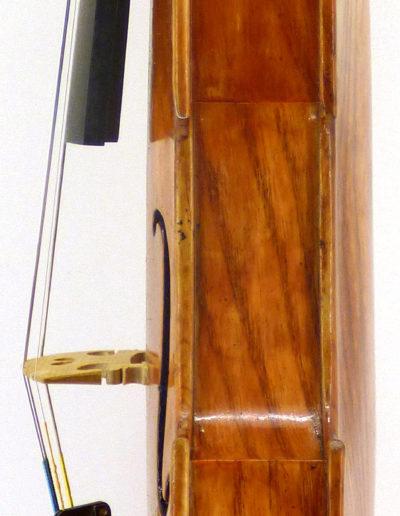 violon gambe
